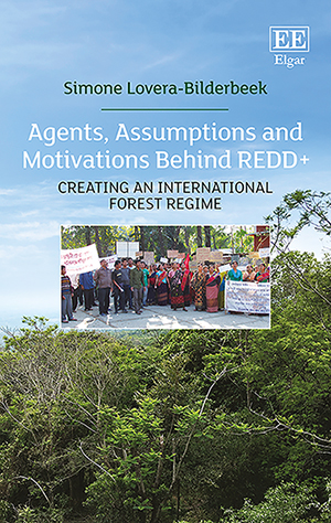 Agents, Assumptions and Motivations Behind REDD+