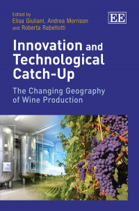 Innovation and Technological Catch-Up