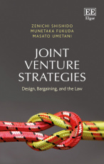 Joint Venture Strategies