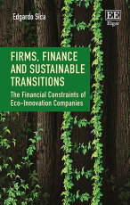 Firms, Finance and Sustainable Transitions
